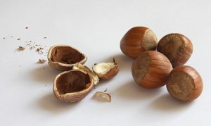 Avellanas frutos secos energía natural